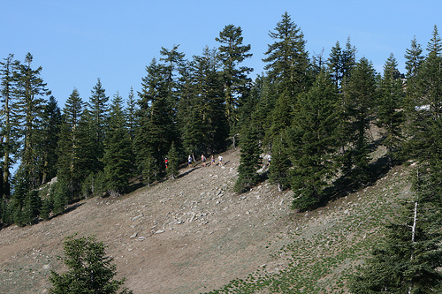 View of the course. (Photo Credit: Siskiyou Out Back Trail Run Website)